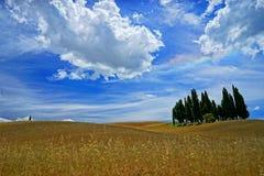 tuscany Immagini Stock