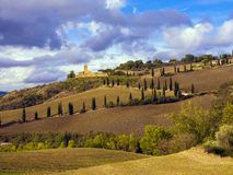 Tuscany agricultural countryside in Italy. Vineyards in the Chianti region of Tuscany, Italy Stock Image