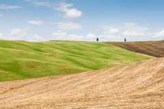 Tuscany agriculture Stock Photography