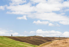 Tuscany agriculture Royalty Free Stock Images