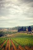 Tuscany in Autumn, stormy clouds  sky and vineyard Royalty Free Stock Photography
