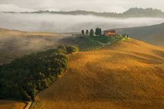 Tuscany beautiful rural landscape Royalty Free Stock Images
