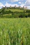 Tuscany castle Royalty Free Stock Image