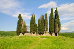 Tuscany cemetary Stock Photography