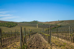 Tuscany Chianti Countryside. Typical Chianti Countryside Tuscany Italy Stock Photos