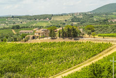 Tuscany - Chianti vineyards Royalty Free Stock Photos