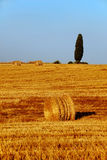 Tuscany Countryside Stock Images