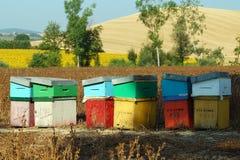 Tuscany Countryside Stock Photography
