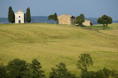 TUSCANY countryside with cypress and farms. Summer countryside in Tuscany with cypress and farms Royalty Free Stock Image