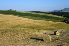 TUSCANY countryside, hayball Royalty Free Stock Photo