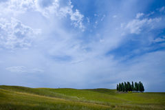 TUSCANY countryside, landscape with cypress Royalty Free Stock Photos