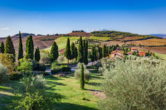 Tuscany countryside landscape with cypress trees, farms and green fields, Italy. Royalty Free Stock Photo