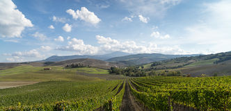 Tuscany countryside landscape in Val D'Orcia, Italy Stock Photos