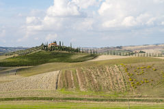 Tuscany countryside landscape in Val D'Orcia, Italy Royalty Free Stock Photos