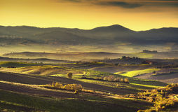 Tuscany countryside misty panorama, rolling hills and green fiel Royalty Free Stock Photos