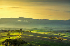 Tuscany countryside misty panorama, rolling hills and green fiel Stock Photo