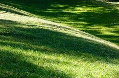 Green grass lawn with shadows. Perfect green grass lawn on landscape designed summer park hollow. Striped shadows on curved meadow surface of grass lawn Stock Photography