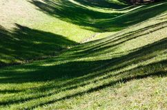Green grass lawn with shadows. Perfect green grass lawn on landscape designed summer park hollow. Striped shadows on curved meadow surface of grass lawn Stock Images