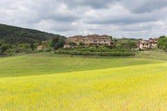 Tuscany countryside Royalty Free Stock Photography