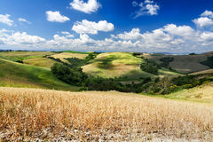 Tuscany countryside Royalty Free Stock Image