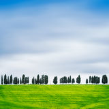 Tuscany, Cypress Trees on a hill rural Chianti landscape, Italy. Stock Photos