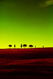 Tuscany cypresses green red Royalty Free Stock Image