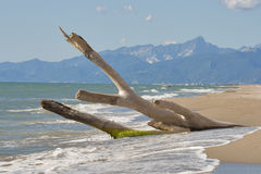 Tuscany deserted sand beach and mountains landscape Royalty Free Stock Photography