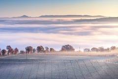 Tuscany dimmig vinterpanorama, Rolling Hills och vingård italy royaltyfria foton