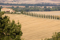 Tuscany estates Royalty Free Stock Images