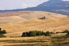 Tuscany estates Royalty Free Stock Photos
