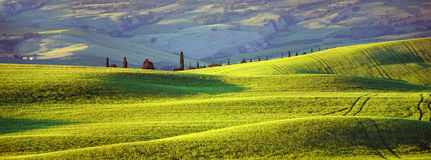 Tuscany, evening sun. Summer green hills rise Stock Images
