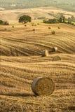 Tuscany fält Arkivbild