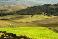 Tuscany fält i höst Royaltyfria Foton