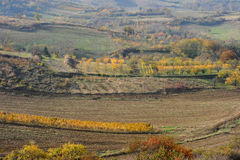 Tuscany Fall Stock Images