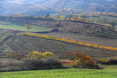 Tuscany Fall Royalty Free Stock Photography