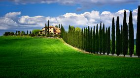 Tuscany famous cypress trees with farmer house on a sunny day and white clouds. In the background Royalty Free Stock Photos