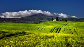 Tuscany famous cypress trees with farmer house on a sunny day and white clouds Stock Photo