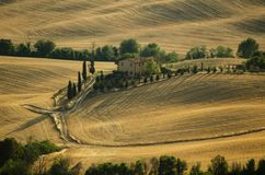 Tuscany farm among golden hills and cypresses Royalty Free Stock Image