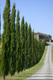 TUSCANY FARM WHIT ROAD Royalty Free Stock Photos