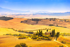 Tuscany, farmland and cypress trees, green fields. San Quirico Orcia, Italy. Stock Images