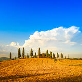 Tuscany, farmland, cypress trees and white road. Royalty Free Stock Images