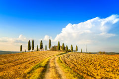 Tuscany, farmland, cypress trees and white road. Siena, Val d Orcia, Italy. Royalty Free Stock Images