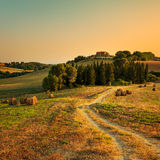 Tuscany, farmland, cypress trees and white road on sunset. Siena Royalty Free Stock Image