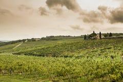 Tuscany fields Stock Photos
