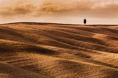 Tuscany fields autumn landscape, Italy. Harvest season Royalty Free Stock Photo