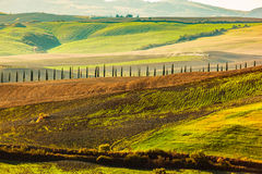 Tuscany fields autumn landscape, Italy. Harvest season Royalty Free Stock Image