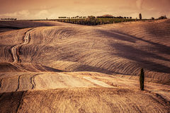 Tuscany fields autumn landscape, Italy. Harvest season Royalty Free Stock Photos