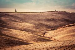 Tuscany fields autumn landscape, panorama, Italy. Harvest season Stock Image