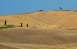 Tuscany fields no.1 Royalty Free Stock Images