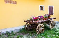 Tuscany flowers Stock Photo